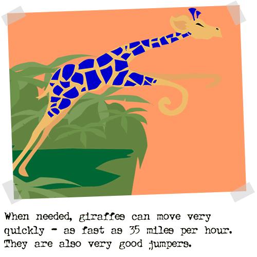 2004-01-08-giraffe07