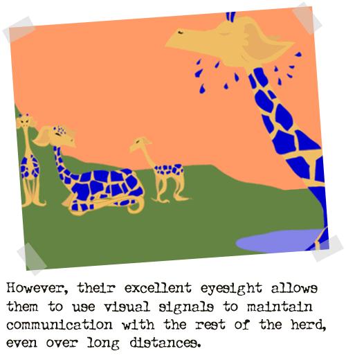 2004-01-21-giraffe20
