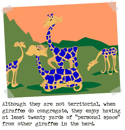 2004-01-23-giraffe22