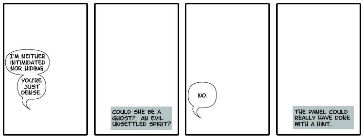 panel17
